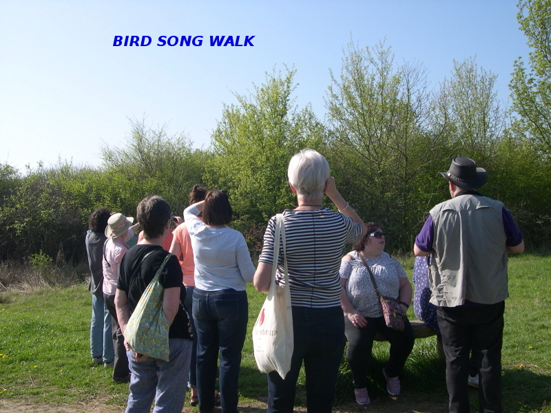 The Bird Song Walk, April 9th 2017